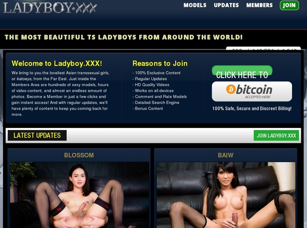 Ladyboy.xxx Trial Price